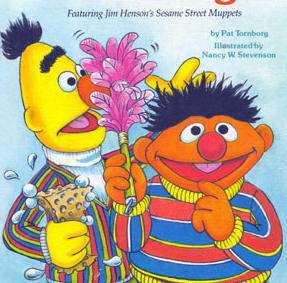"Norwex ""Bert & Ernie Cloths"""