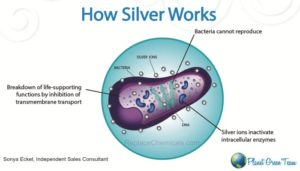 How does silver in Norwex work?