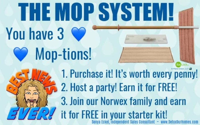 Norwex Mop System